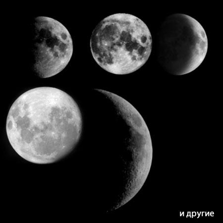 Кисти для фотошопа - луна: http://dnzl.ru/view_post.php?id=109
